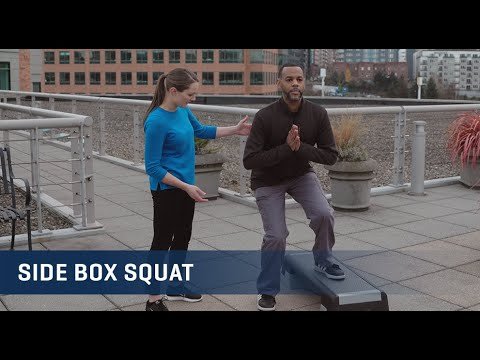 Embedded thumbnail for Side Box Squat Exercise Video